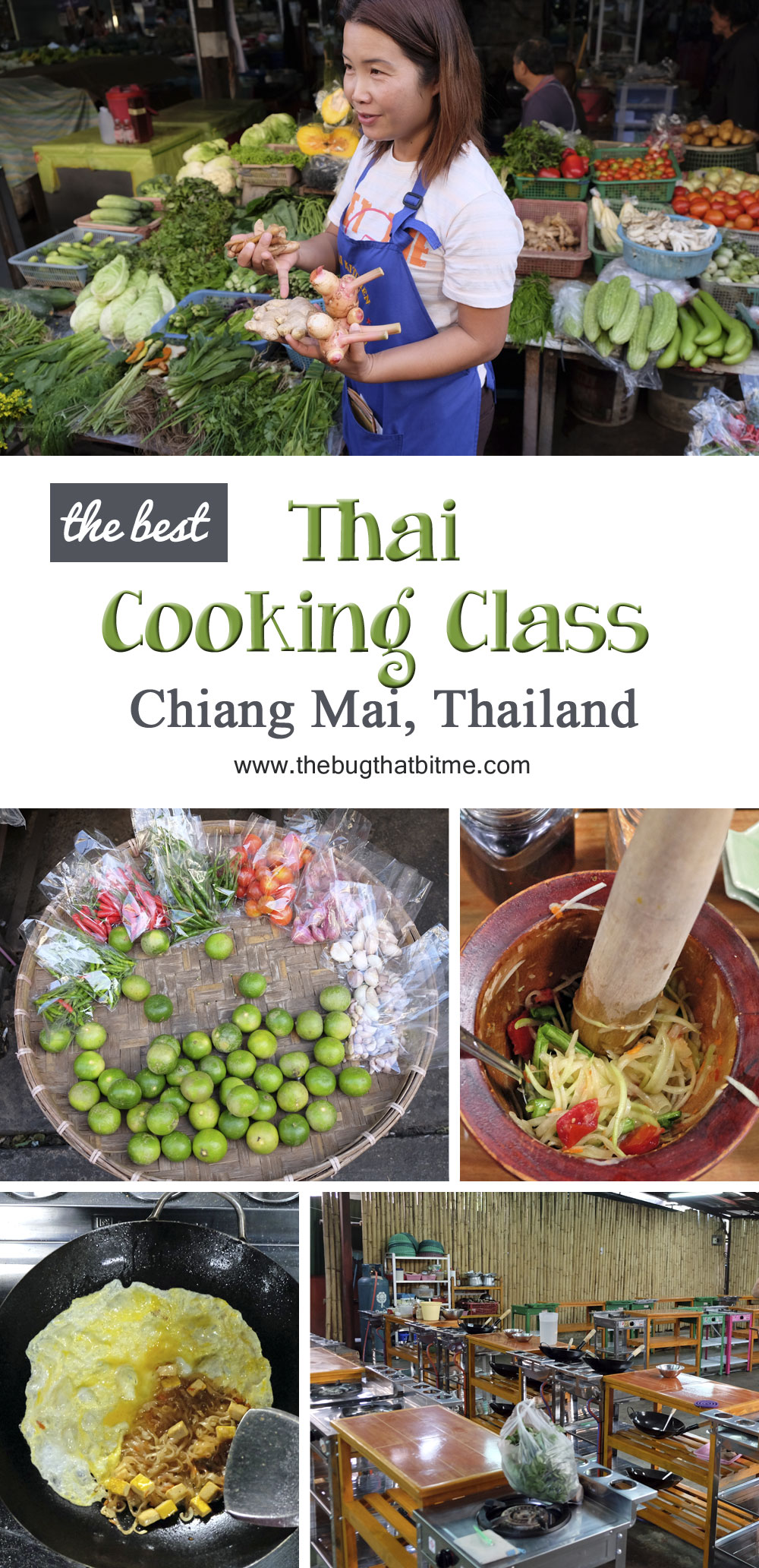 The best Thai Cooking Class in Chiang Mai, Thailand!
