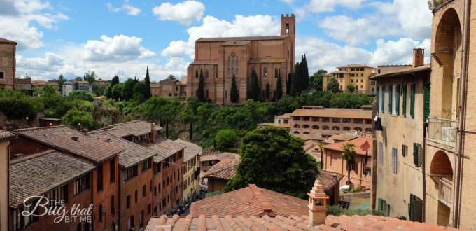 Siena, Italy | The Bug That Bit Me